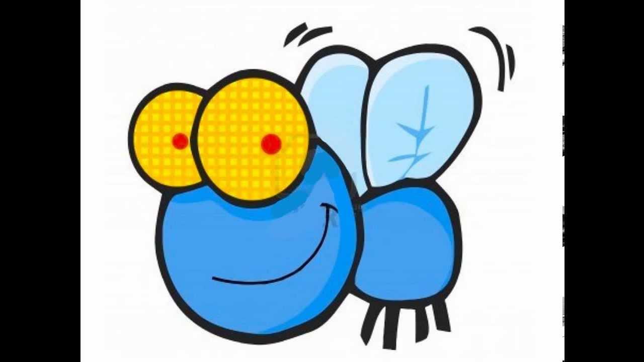 ماذا يطلق على صوت الذباب ؟